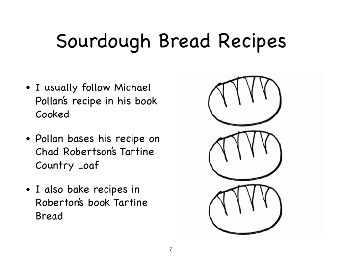 Sourdough starter slides images 04.04.15.007