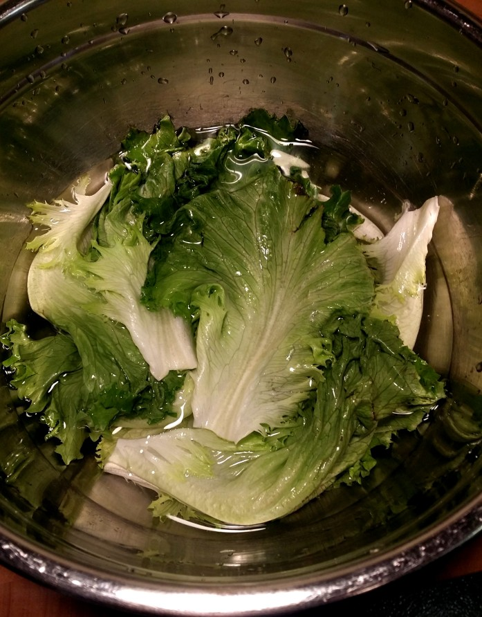 submerged lettuce