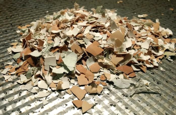 crushed-shells